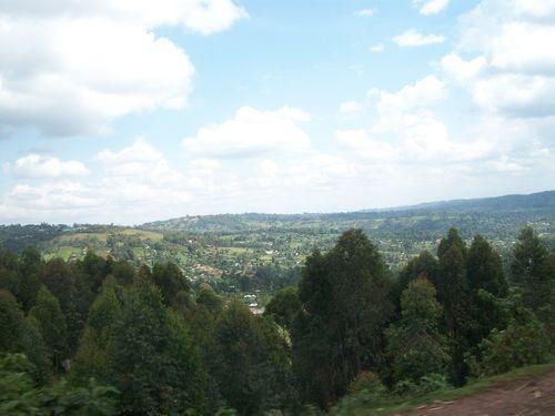 Omogaka Nyandika oikire nyomba bwoye aaria makairo